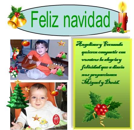 20091216201541-napias.jpg